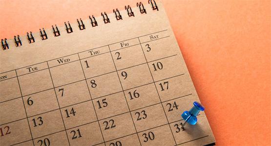 calendario ans